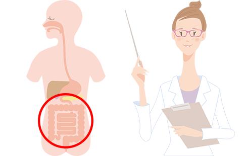 腸もみ説明画像